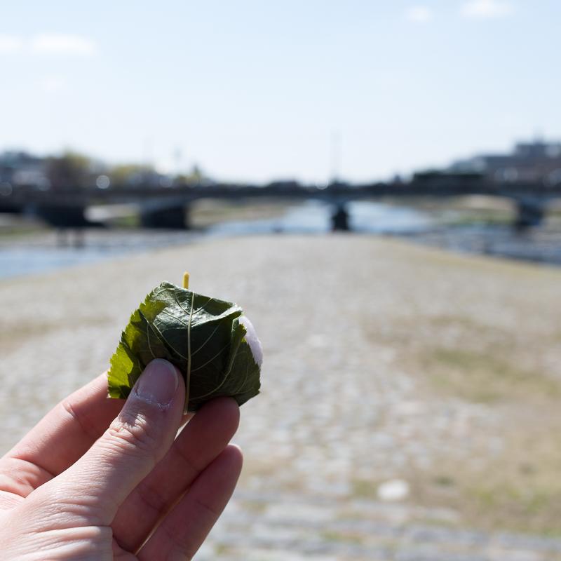 京都最後の日