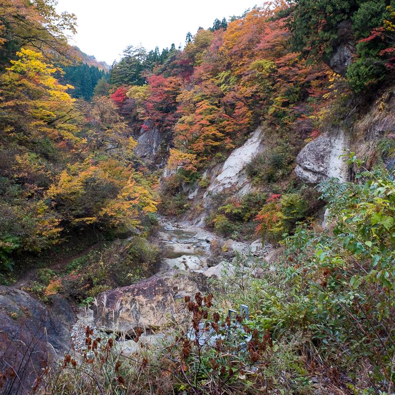 面白山高原・紅葉川渓谷を散策